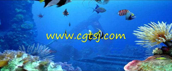 >> 唯美海底世界卡通鱼群珊瑚水草婚礼婚庆led大屏幕背景视频素材