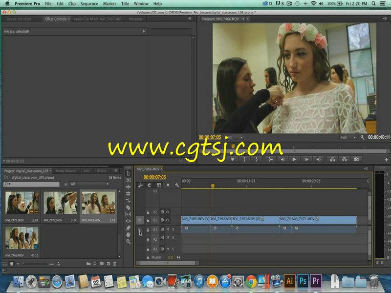 Premiere Pro CC从基础到深入使用技巧视频教程的图片1