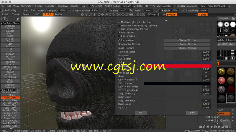 3DCoat概念角色雕刻技术训练视频教程的图片1