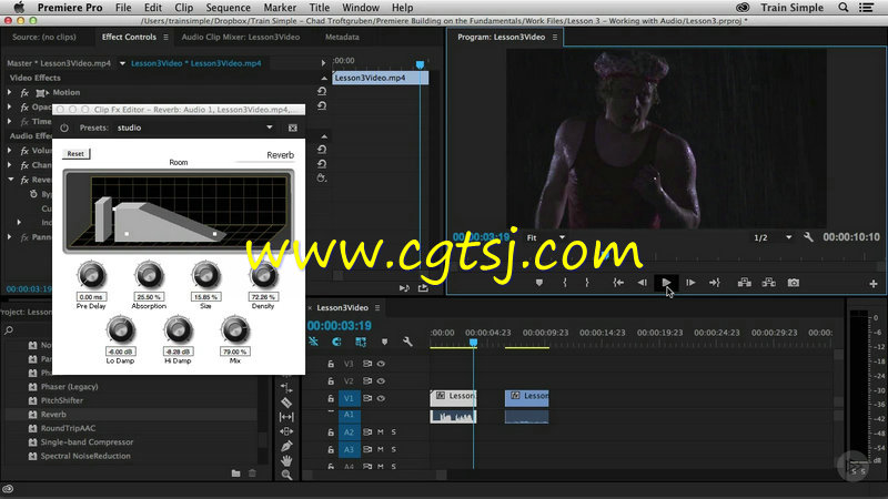 Premiere Pro CC基础核心技术训练视频教程的图片2