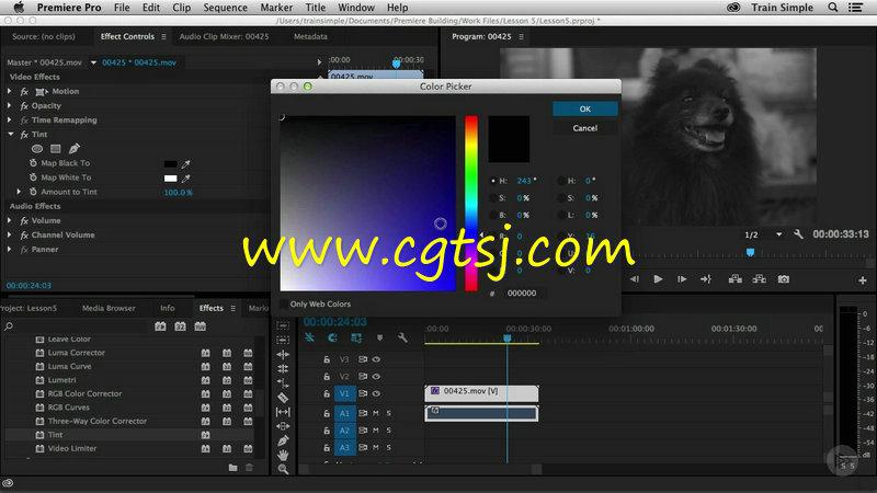 Premiere Pro CC基础核心技术训练视频教程的图片3