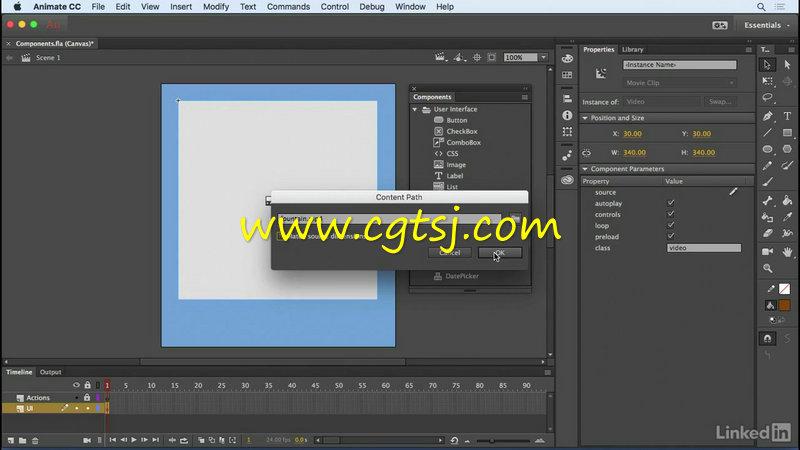 Animate CC 2017新功能训练视频教程的图片3