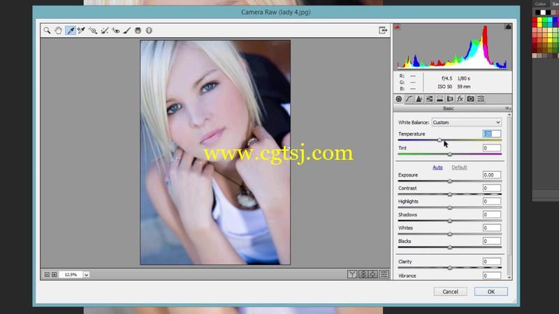 PS中Camera RAW滤镜肖像修饰技巧视频教程的图片2