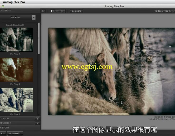 Nik摄影图像后期处理技术视频教程(中文字幕)的图片2