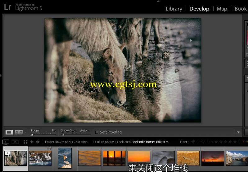 Nik摄影图像后期处理技术视频教程(中文字幕)的图片3