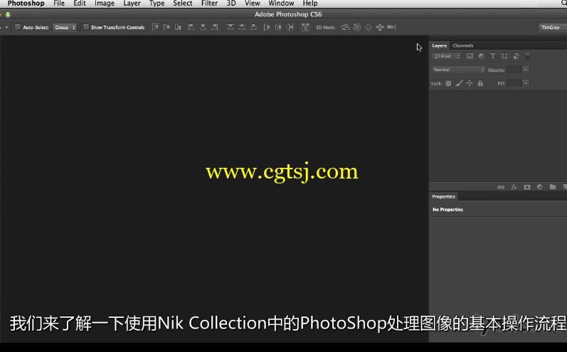 Nik摄影图像后期处理技术视频教程(中文字幕)的图片4