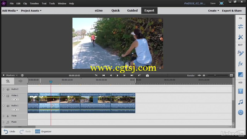 Premiere Elements 2018视频编辑核心技术视频教程的图片1