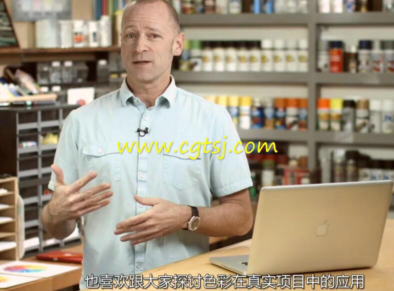 色彩的语言艺术设计大师级训练视频教程(中文字幕)的图片2